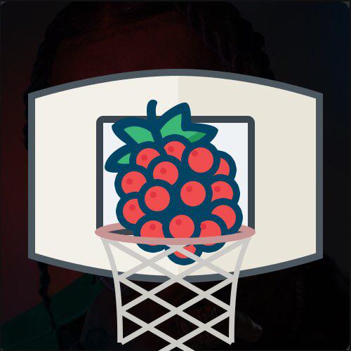 小红莓篮球